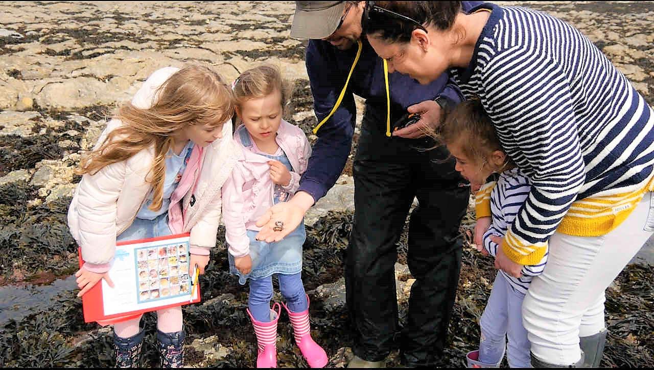 Monthly Marine Biology Adventures